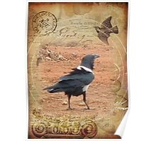 Domino, the Pied Crow Poster