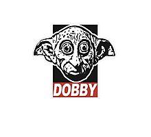 Dobby Obey Photographic Print