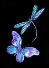 Dragonfly and Butterfly Wings by Linda Callaghan