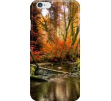 The Colors Of Life ~ Fall Colors ~ iPhone Case/Skin