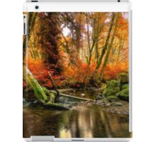 The Colors Of Life ~ Fall Colors ~ iPad Case/Skin