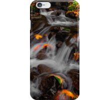 And Then There Was Colors ~ Oregon Fall Colors ~ iPhone Case/Skin