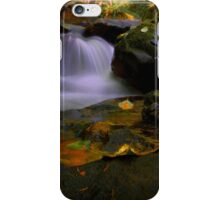 I Had A Dream ~ Oregon Fall Colors ~ iPhone Case/Skin