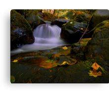 I Had A Dream ~ Oregon Fall Colors ~ Canvas Print