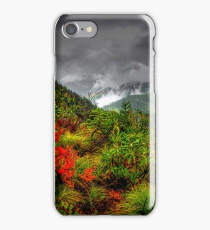 Under Controll ~ Oregon High Cascades ~ iPhone Case/Skin