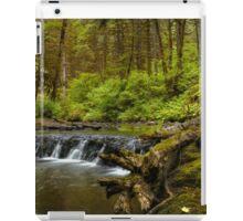 I Got Stumped ~ Oregon Cascades ~ iPad Case/Skin