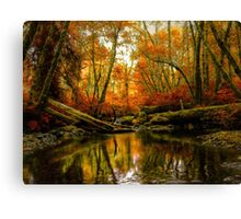 Overflow ~ Fall Colors ~ Canvas Print