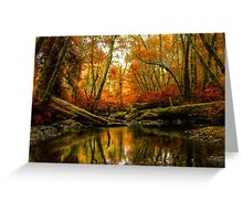 Overflow ~ Fall Colors ~ Greeting Card