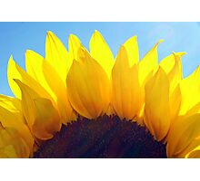 ~sunshine~ Photographic Print