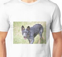 Milo the Blue Heeler Unisex T-Shirt