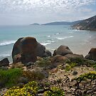 Wilsons Promontory, Victoria.  by johnrf