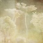 wild grasses 21 by vigor