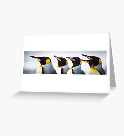 Penguin Parade Greeting Card