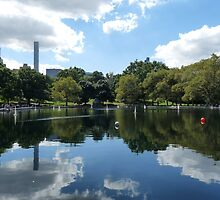 A STILL DAY in CENTRAL PARK by Marilyn Grimble