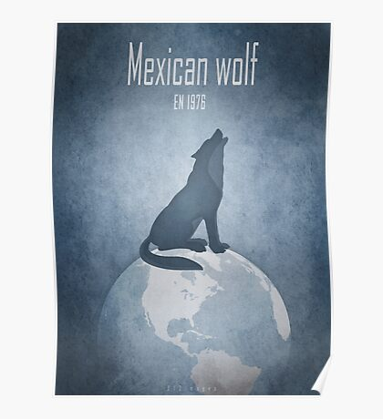 Mexican wolf - endangered animals Poster