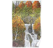 Birch Falls, extra trees Poster