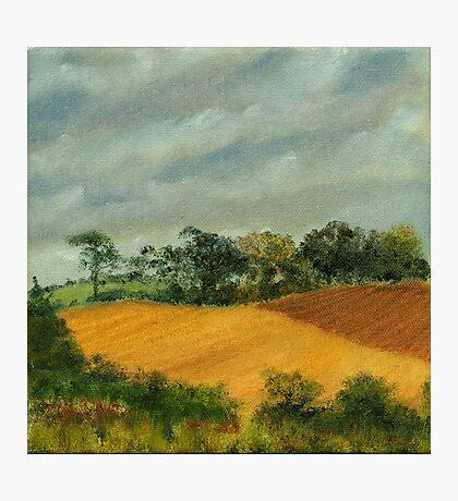 Cornfield Under Brooding Sky Photographic Print