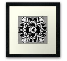 Turtle Shield of Spiking Framed Print