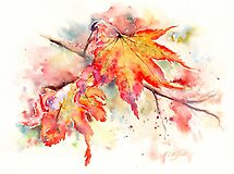 Glorious Fall by Ruth S Harris