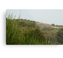 Approaching the Highest Hill Metal Print