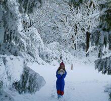 WINTER WONDERLAND GROTTO IN DEVON GARDEN AFTER SNOW Sticker