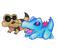 Best Buds (Sandile and Totodile) Photographic Print