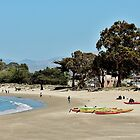 Afternoon on Monterey Beach by Martha Sherman