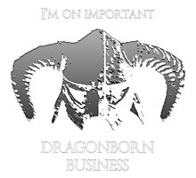Skyrim | Dragonborn Business Photographic Print