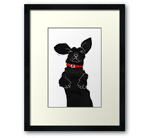 red collar Framed Print