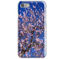 Happiness is . . . SPRING! iPhone Case/Skin