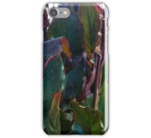 Leaves at Heligan iPhone Case/Skin