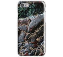 Textures of Kynance Cove iPhone Case/Skin