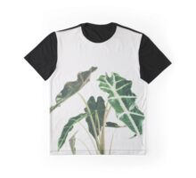 Elephant Ear Graphic T-Shirt