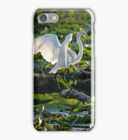 Snowy egret in lilypads iPhone Case/Skin