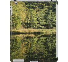 Pickerel Shoreline Reflection iPad Case/Skin