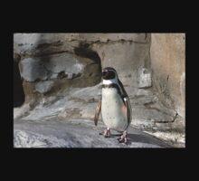 Humboldt Penguin One Piece - Short Sleeve