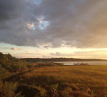 dusk in the marsh by hankierat