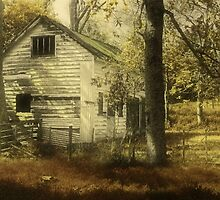 Autumn Treads Gently Around the Old Barn by Peter Kurdulija