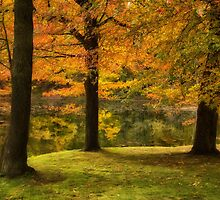 Trees in Autumn by Kathy Weaver