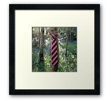 Silk Tie. Framed Print