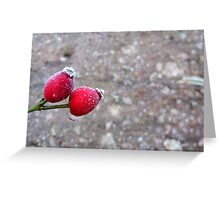 It Was 'Berry' Cold Greeting Card