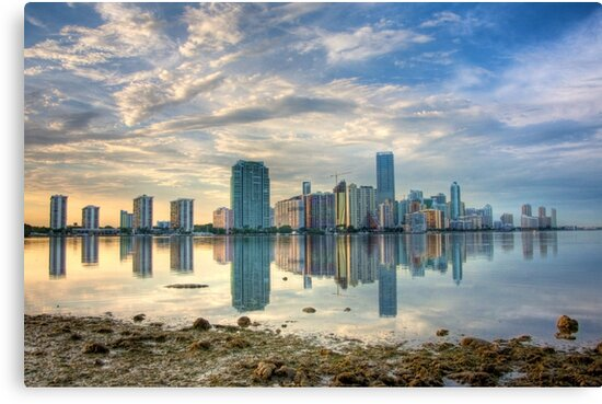 Miami Skyline by Bill Wetmore
