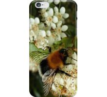Busy Bee. iPhone Case/Skin
