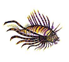 Lion Fish  Photographic Print