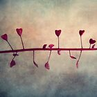 Dancing Hearts by lucyliu