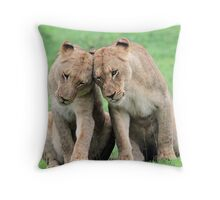 Don`t worry sis the big lions won`t hurt us!! Throw Pillow
