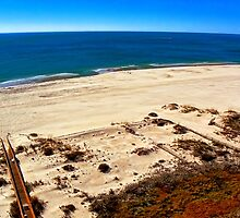 Orange Beach, Alabama USA by Mike Pesseackey (crimsontideguy)