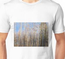 Aspen Grove - 1 Unisex T-Shirt