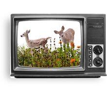 deerest television Canvas Print