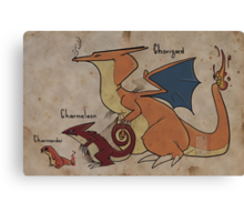 Charizard and cie Canvas Print